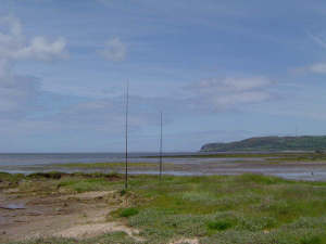 2w0daa_beach_vertical_antennas_17_a