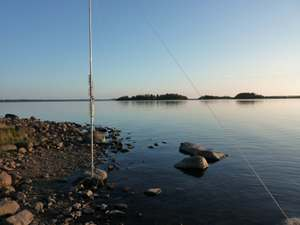 Vertical_in_water_gulf_of_bothnia_j