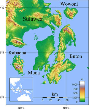 Buton_topography