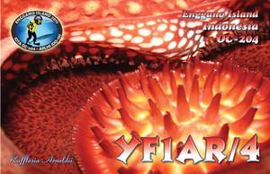 Ffyf1ar_4_oc204
